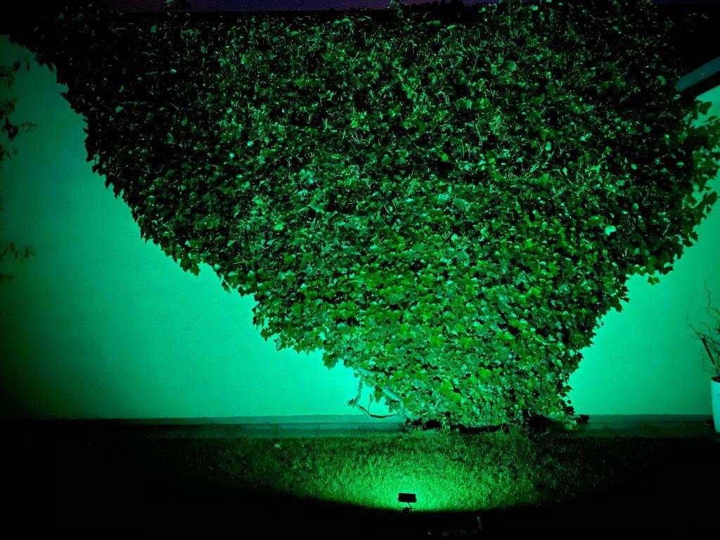 RGB reflektor zelený