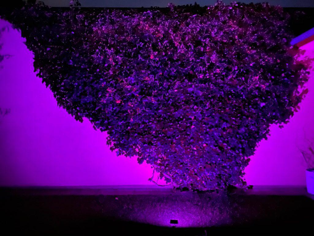 RGB reflektor fialový