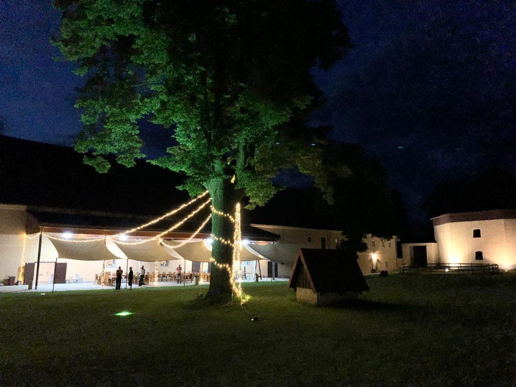 světelné řetězy a reflektor se stromem